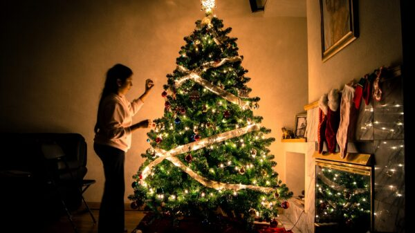 What is a flocked Christmas tree?