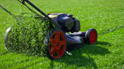 5 Topmost Things To Be Kept Under Consideration While Performing Gardening