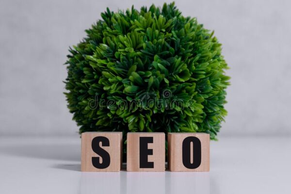 Small business SEO: 10 really effective strategies